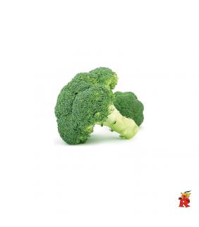 Broccoli Extra 1 Kg
