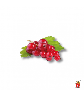 Ribes Rosso 125 Gr.